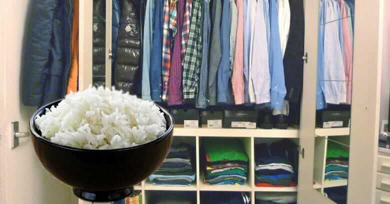 de arroz no seu guarda-roupa